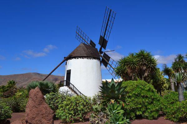 Fuerteventura Tour