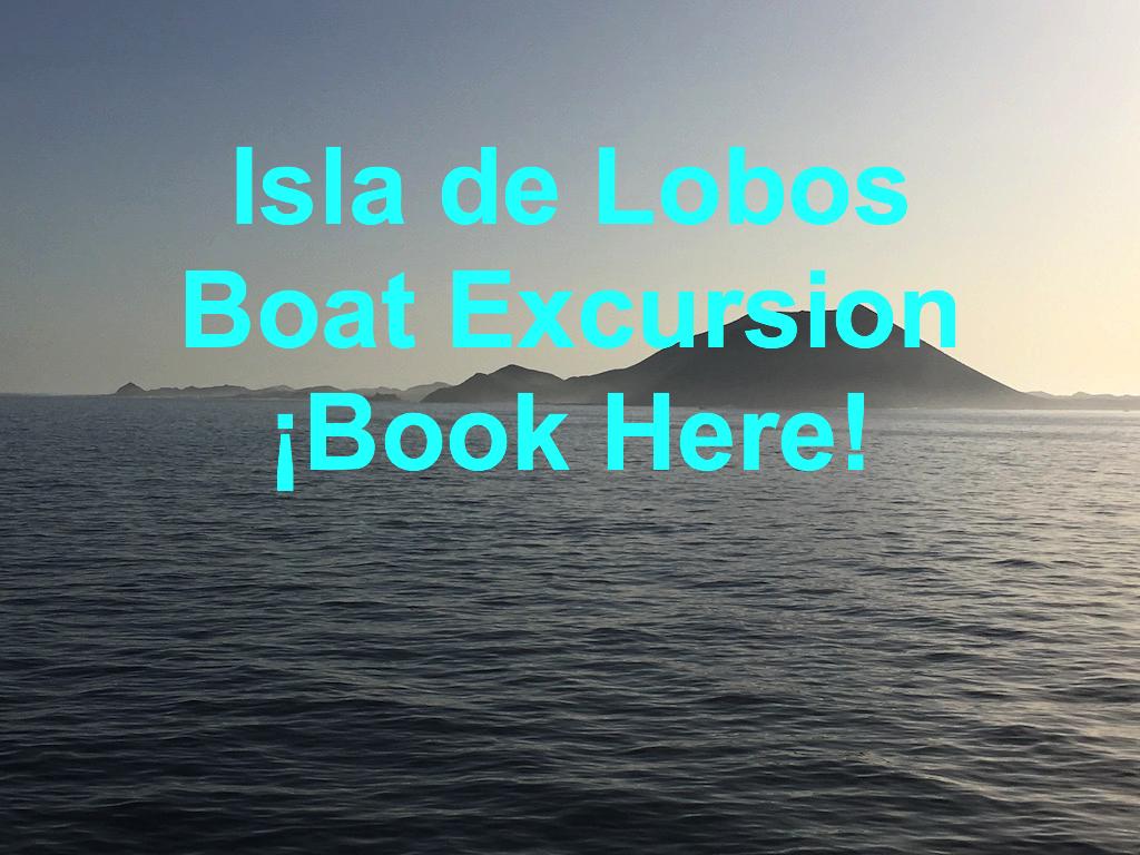 Isla de Lobos Boat Excursion