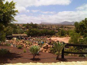 Rancho Texas Park - Fun For The Whole Family In Lanzarote